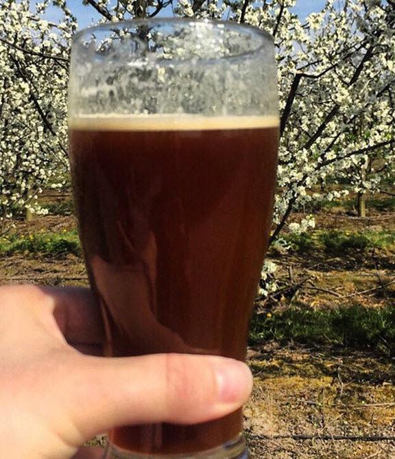 Gotlandsdricka ale